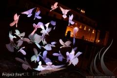 IMG_9150 - Hochzeit im Winter - Feuershow