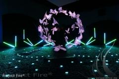 IMG_0750 - Lichtjonglage Show Gala Effekte Feuerlichtshow